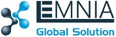 LEMNIA GLOBAL SOLUTION